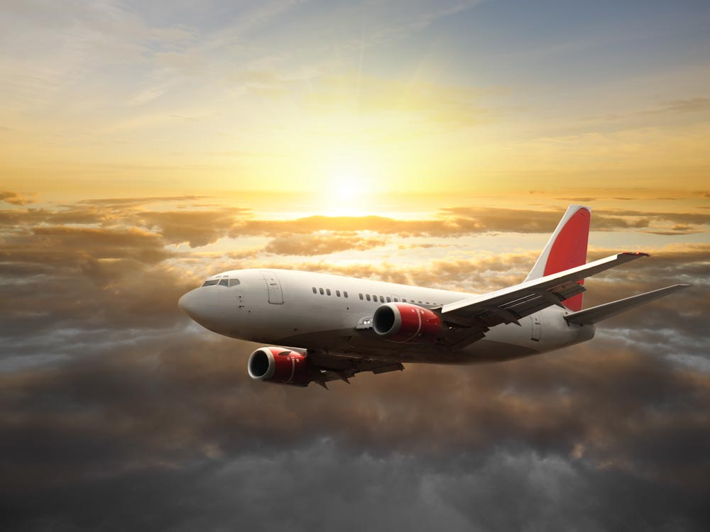 Issues Regarding Your Flight